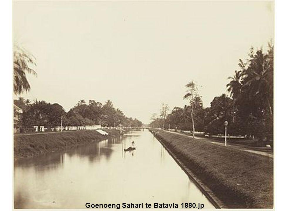 Goenoeng Sahari te Batavia 1880.jp