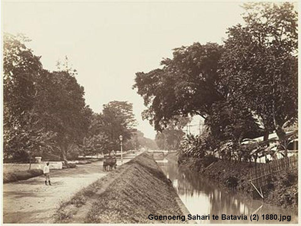 Goenoeng Sahari te Batavia (2) 1880.jpg