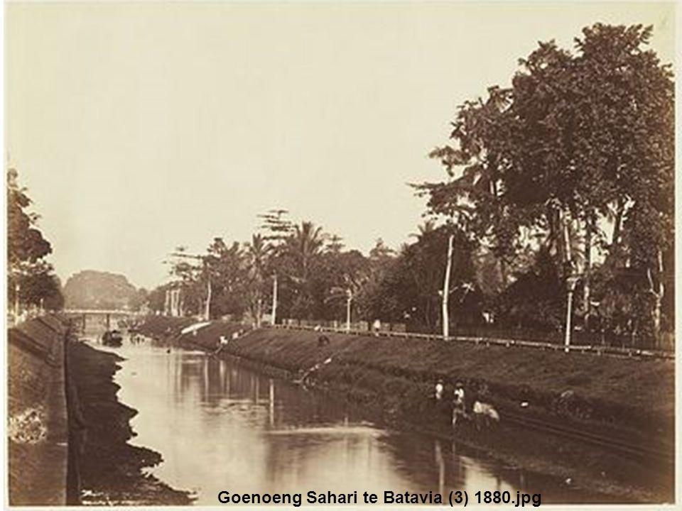 Goenoeng Sahari te Batavia (3) 1880.jpg