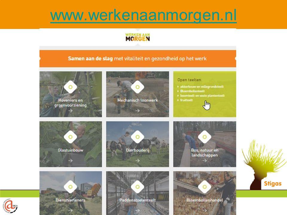 www.werkenaanmorgen.nl