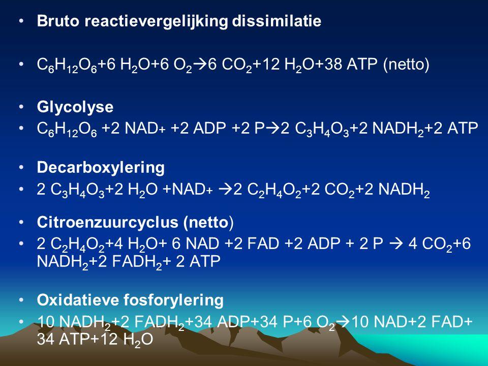 Bruto reactievergelijking dissimilatie C 6 H 12 O 6 +6 H 2 O+6 O 2  6 CO 2 +12 H 2 O+38 ATP (netto) Glycolyse C 6 H 12 O 6 +2 NAD + +2 ADP +2 P  2 C