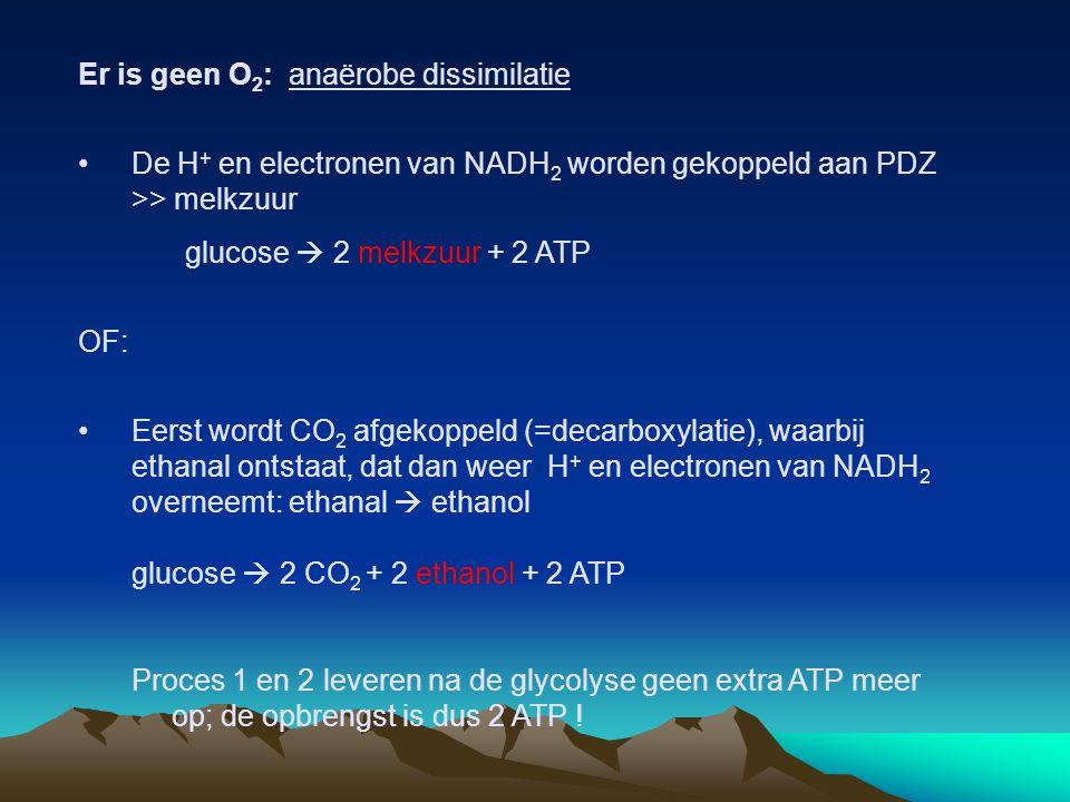 Er is geen O 2 : anaërobe dissimilatie De H + en electronen van NADH 2 worden gekoppeld aan PDZ >> melkzuur glucose  2 melkzuur + 2 ATP OF: Eerst wor