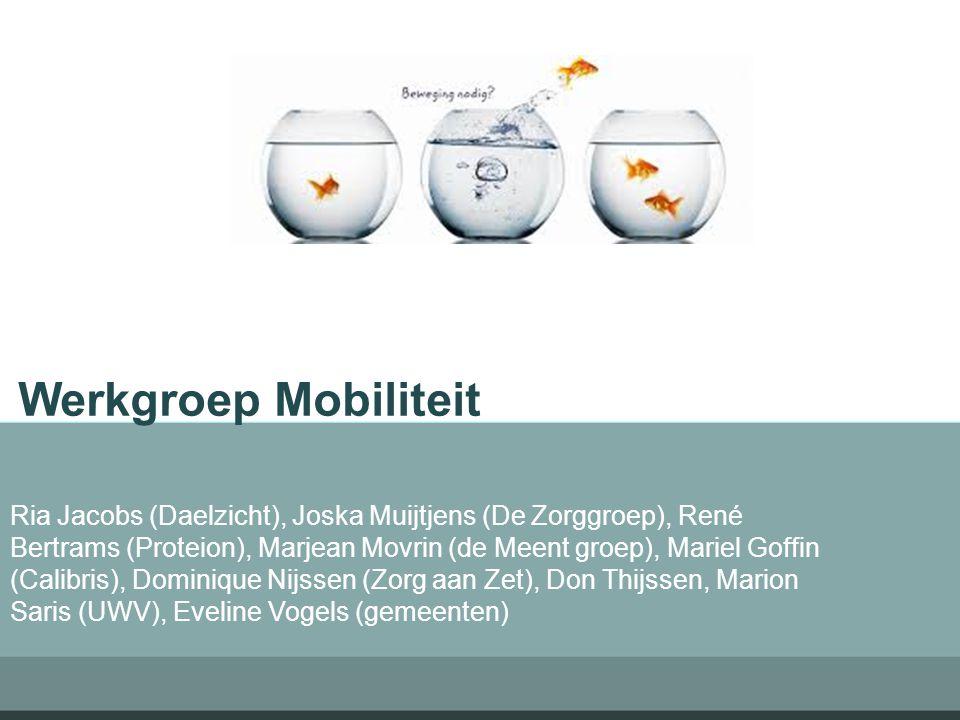 Werkgroep Mobiliteit Ria Jacobs (Daelzicht), Joska Muijtjens (De Zorggroep), René Bertrams (Proteion), Marjean Movrin (de Meent groep), Mariel Goffin