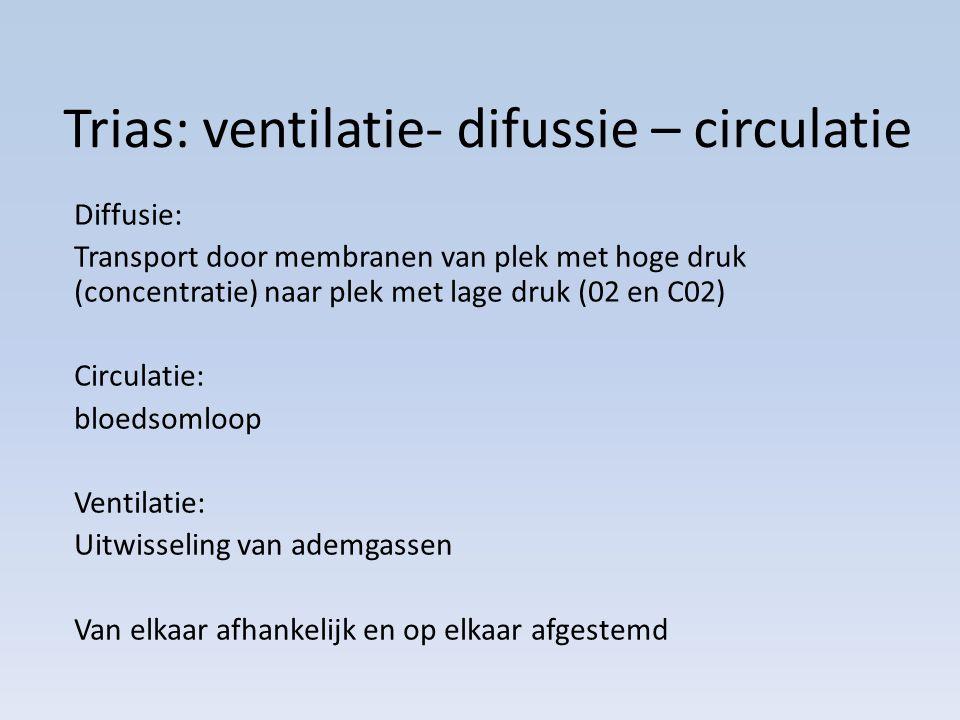 Trias: ventilatie- difussie – circulatie Diffusie: Transport door membranen van plek met hoge druk (concentratie) naar plek met lage druk (02 en C02) Circulatie: bloedsomloop Ventilatie: Uitwisseling van ademgassen Van elkaar afhankelijk en op elkaar afgestemd