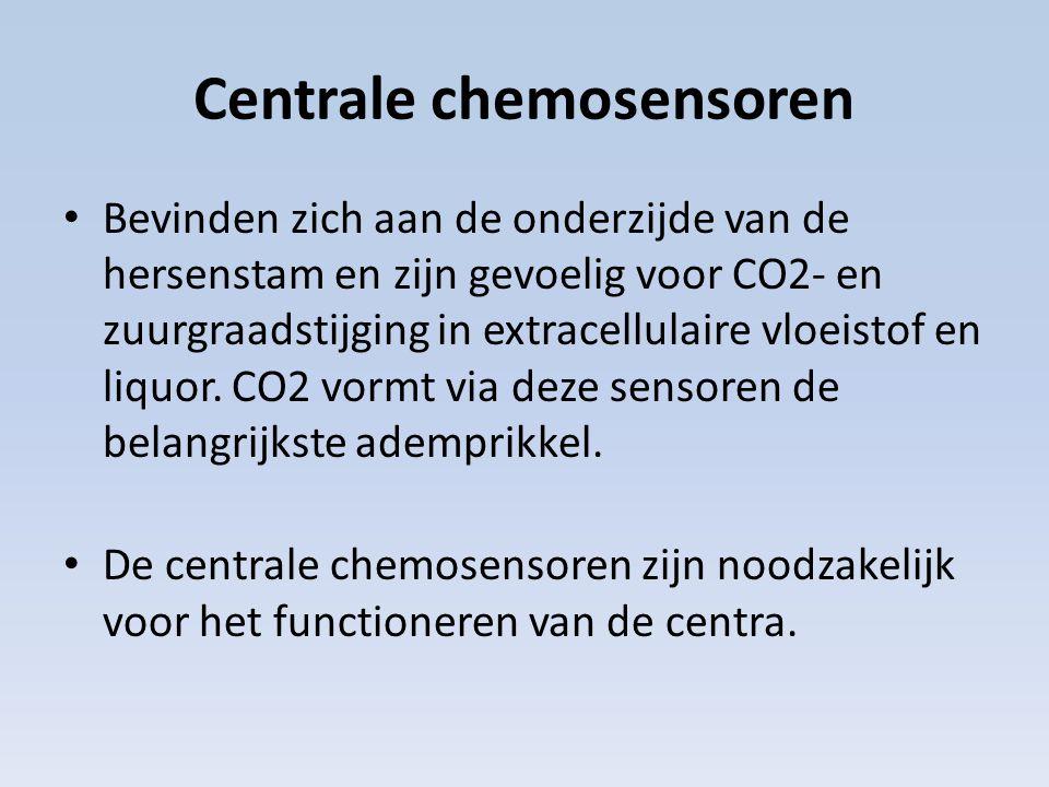 Centrale chemosensoren Bevinden zich aan de onderzijde van de hersenstam en zijn gevoelig voor CO2- en zuurgraadstijging in extracellulaire vloeistof en liquor.