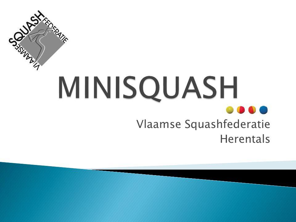 Vlaamse Squashfederatie Herentals