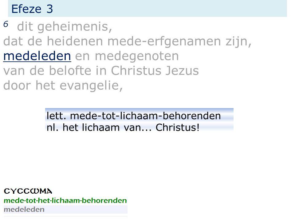 Efeze 3 6 dit geheimenis, dat de heidenen mede-erfgenamen zijn, medeleden en medegenoten van de belofte in Christus Jezus door het evangelie, lett.