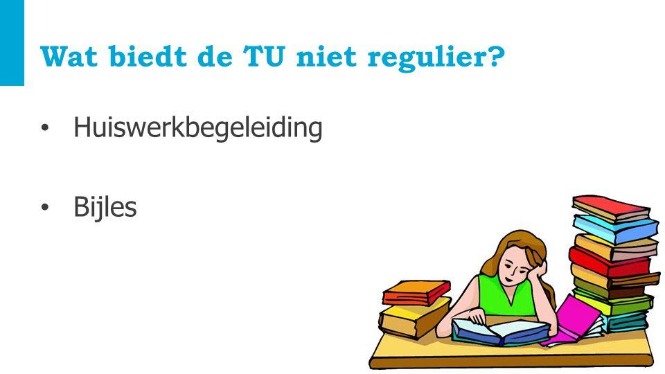 Wat biedt de TU niet regulier? Huiswerkbegeleiding Bijles