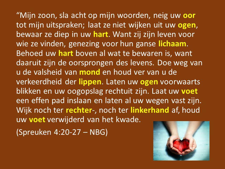 """""""Mijn zoon, sla acht op mijn woorden, neig uw oor tot mijn uitspraken; laat ze niet wijken uit uw ogen, bewaar ze diep in uw hart. Want zij zijn leven"""