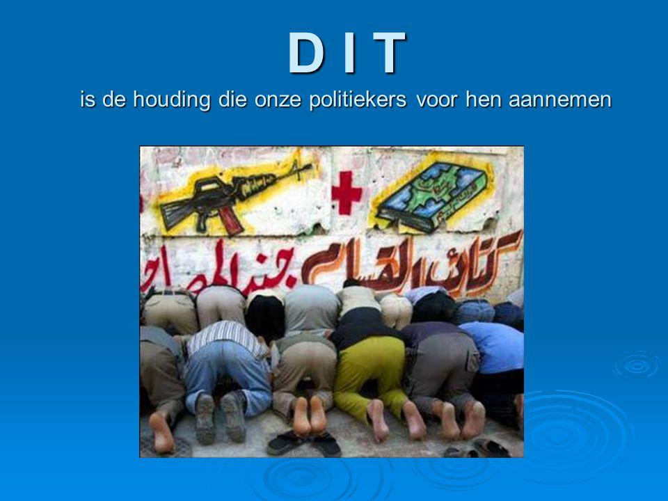 D I T is de houding die onze politiekers voor hen aannemen