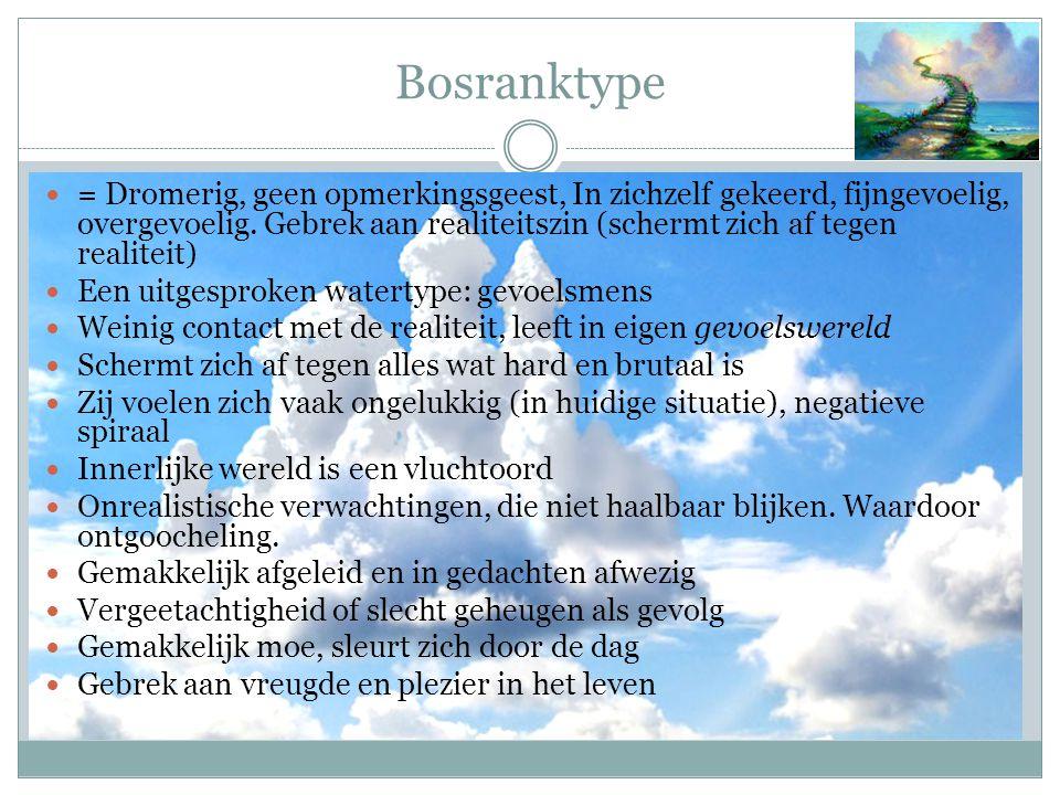 Bosranktype = Dromerig, geen opmerkingsgeest, In zichzelf gekeerd, fijngevoelig, overgevoelig. Gebrek aan realiteitszin (schermt zich af tegen realite