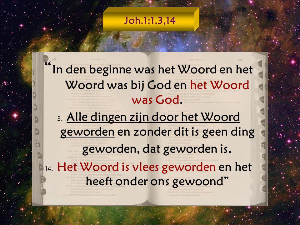 """"""" In den beginne was het Woord en het Woord was bij God en het Woord was God. 3. Alle dingen zijn door het Woord geworden en zonder dit is geen ding g"""