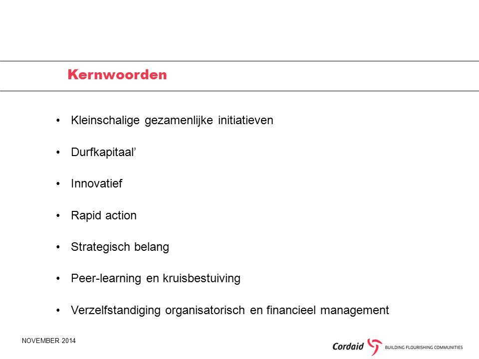 NOVEMBER 2014 Kernwoorden Kleinschalige gezamenlijke initiatieven Durfkapitaal' Innovatief Rapid action Strategisch belang Peer-learning en kruisbestuiving Verzelfstandiging organisatorisch en financieel management