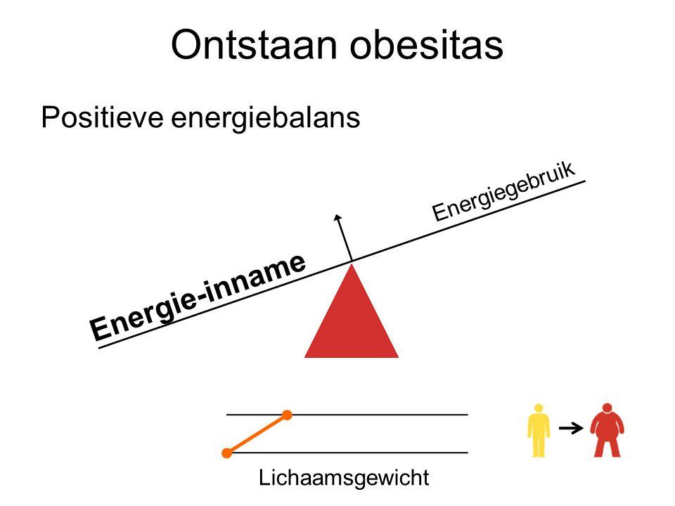 Ontstaan obesitas Energie-inname Energiegebruik Positieve energiebalans Lichaamsgewicht
