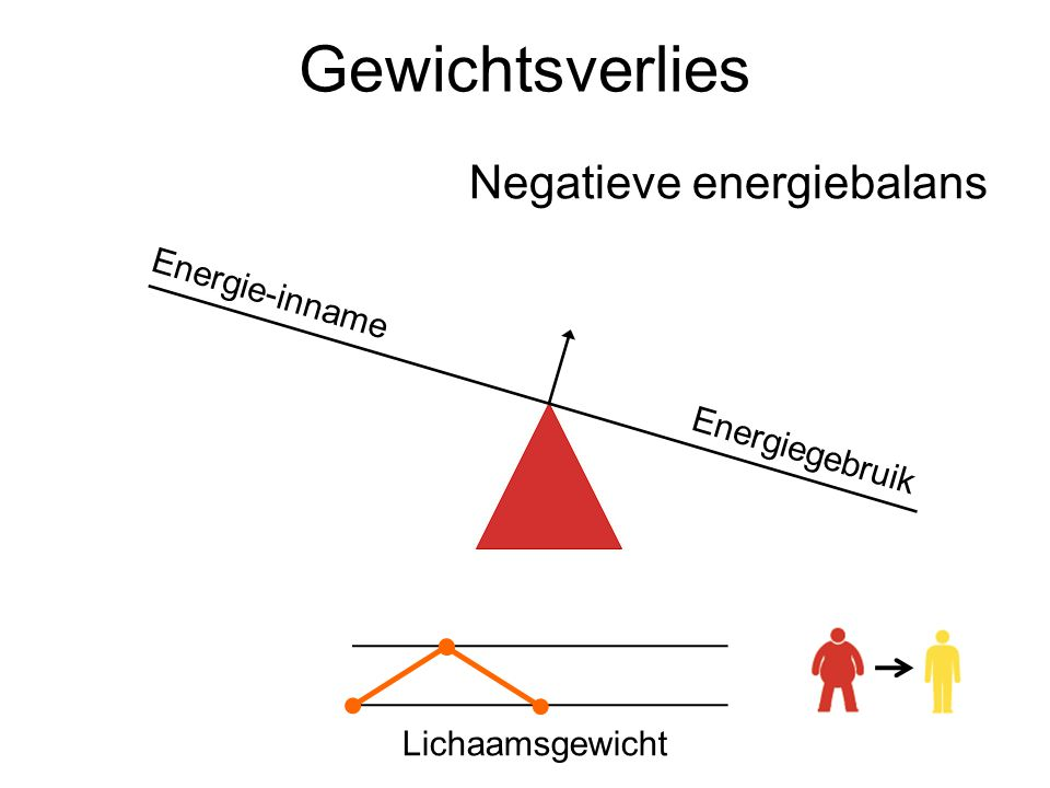 Gewichtsverlies Negatieve energiebalans Lichaamsgewicht Energie-innameEnergiegebruik