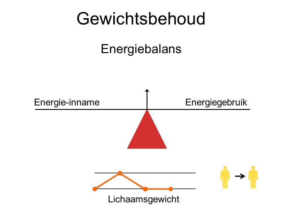 Gewichtsbehoud Energiebalans Lichaamsgewicht Energie-innameEnergiegebruik