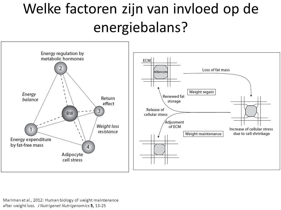 Welke factoren zijn van invloed op de energiebalans? Mariman et al., 2012: Human biology of weight maintenance after weight loss. J Nutrigenet Nutrige