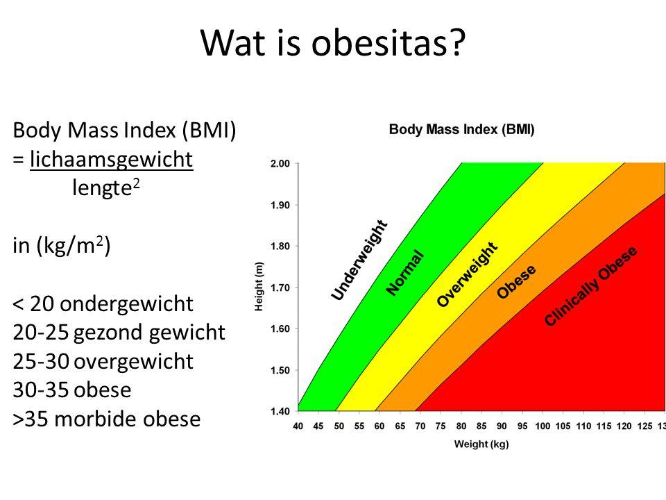 Wat is obesitas? Body Mass Index (BMI) = lichaamsgewicht lengte 2 in (kg/m 2 ) < 20 ondergewicht 20-25 gezond gewicht 25-30 overgewicht 30-35 obese >3