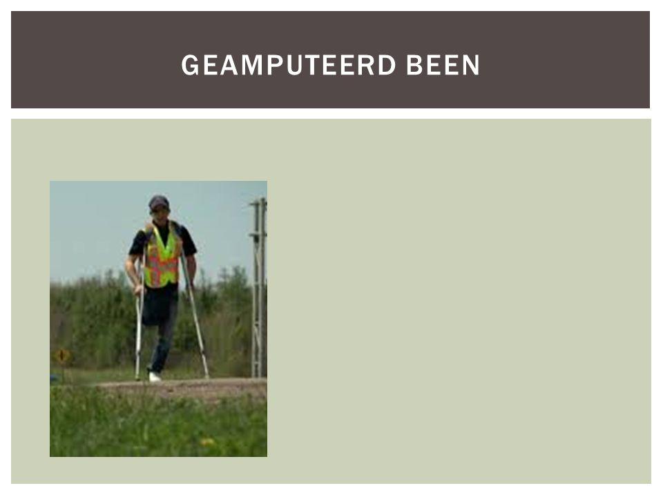 GEAMPUTEERD BEEN