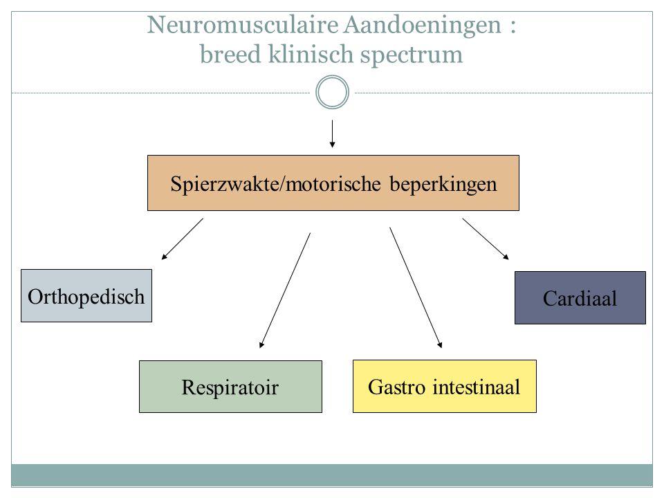Neuromusculaire Aandoeningen : breed klinisch spectrum Spierzwakte/motorische beperkingen Orthopedisch Respiratoir Gastro intestinaal Cardiaal