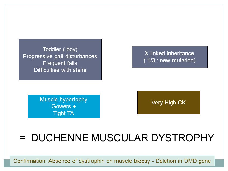 Toddler ( boy) Progressive gait disturbances Frequent falls Difficulties with stairs X linked inheritance ( 1/3 : new mutation) Muscle hypertophy Gowe