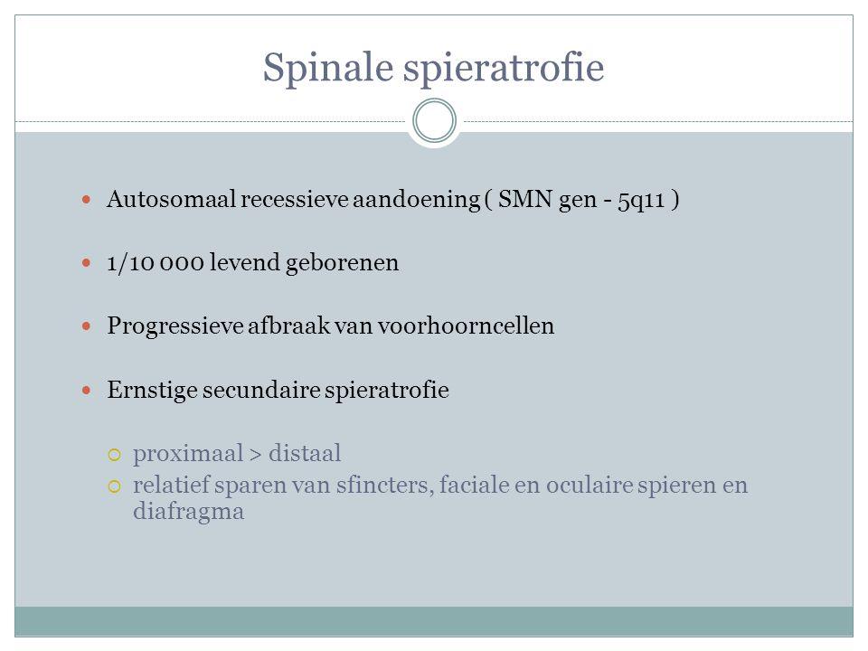 Spinale spieratrofie Autosomaal recessieve aandoening ( SMN gen - 5q11 ) 1/10 000 levend geborenen Progressieve afbraak van voorhoorncellen Ernstige secundaire spieratrofie  proximaal > distaal  relatief sparen van sfincters, faciale en oculaire spieren en diafragma
