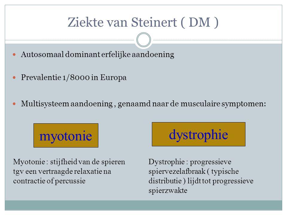 Ziekte van Steinert ( DM ) Autosomaal dominant erfelijke aandoening Prevalentie 1/8000 in Europa Multisysteem aandoening, genaamd naar de musculaire symptomen: myotonie dystrophie Myotonie : stijfheid van de spieren tgv een vertraagde relaxatie na contractie of percussie Dystrophie : progressieve spiervezelafbraak ( typische distributie ) lijdt tot progressieve spierzwakte