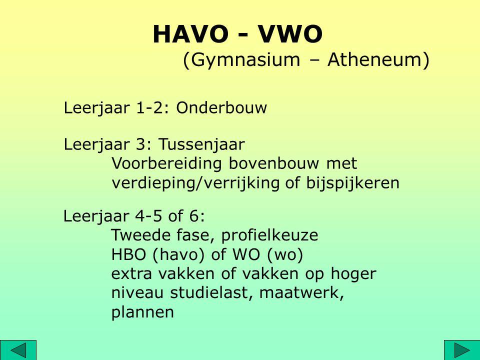 HAVO - VWO (Gymnasium – Atheneum) Leerjaar 1-2: Onderbouw Leerjaar 3: Tussenjaar Voorbereiding bovenbouw met verdieping/verrijking of bijspijkeren Lee