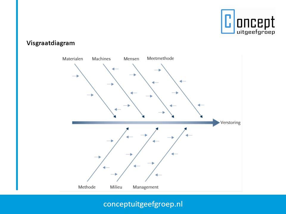 conceptuitgeefgroep.nl Visgraatdiagram