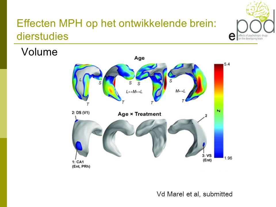 Effecten MPH op het ontwikkelende brein: dierstudies Volume Vd Marel et al, submitted