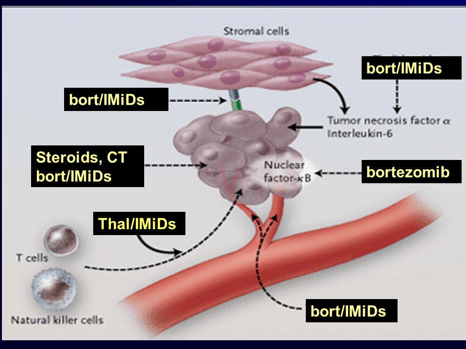 Nieuwe middelen bij MM: imids Thalidomide: – slaapmiddel/antiemeticum; teratogeen – Angiogeneseremmer – immuunmodulatoir (T cellen, NK cellen), cytokines – Bijwerkingen: slaperig, neuropathie, trombose Lenalidomide: – Ontwikkeld als opvolger thalidomide – Veel sterker immuunmodulatoir effect – Veel minder bijwerkingen