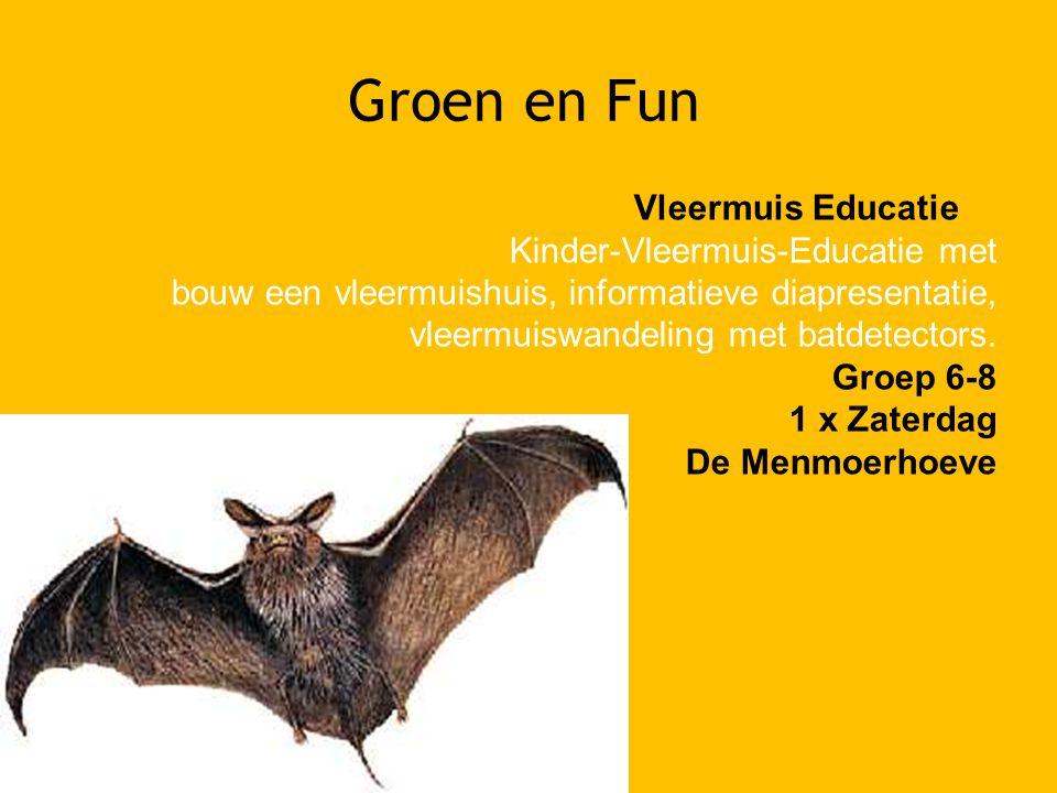 Groen en Fun Vleermuis Educatie Kinder-Vleermuis-Educatie met bouw een vleermuishuis, informatieve diapresentatie, vleermuiswandeling met batdetectors.