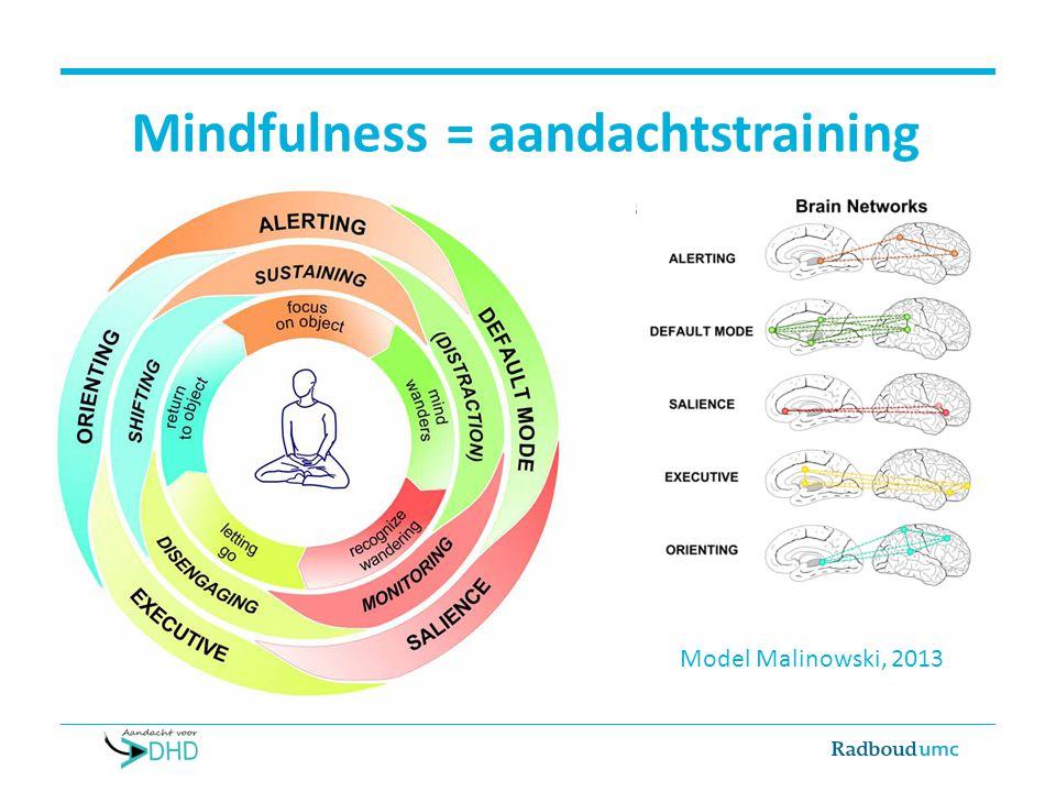 Mindfulness = aandachtstraining Model Malinowski, 2013