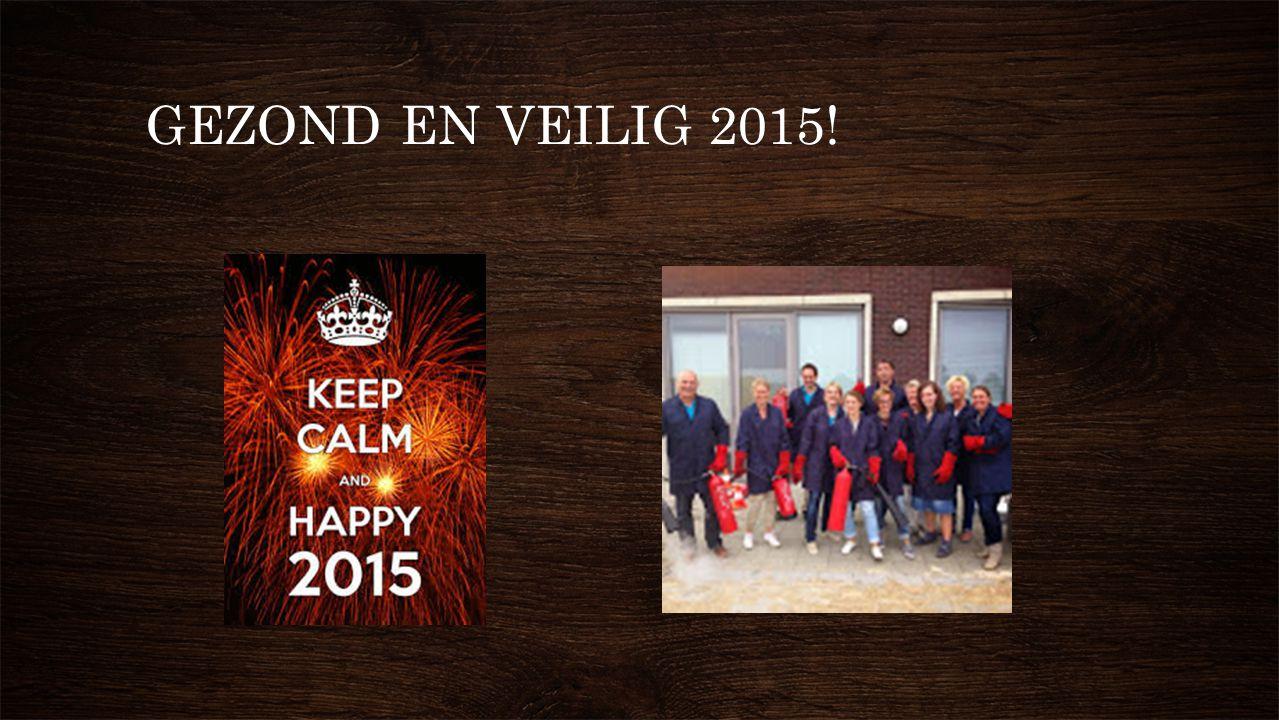GEZOND EN VEILIG 2015!