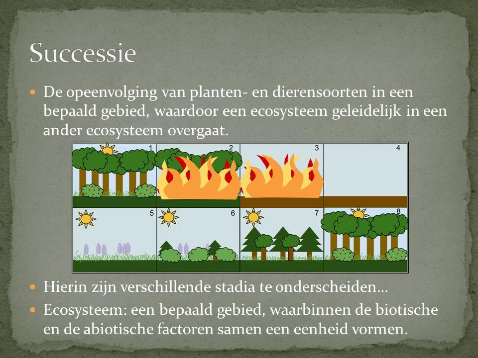 De opeenvolging van planten- en dierensoorten in een bepaald gebied, waardoor een ecosysteem geleidelijk in een ander ecosysteem overgaat.