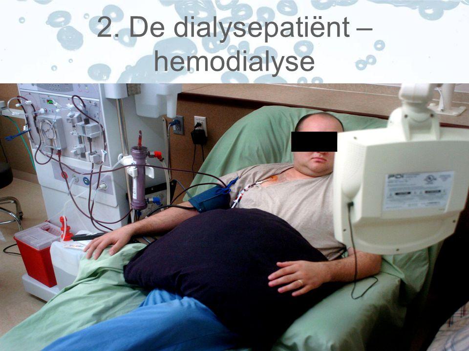 2. De dialysepatiënt – hemodialyse
