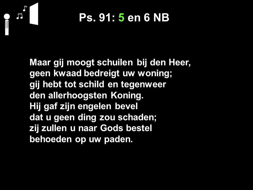 Ps. 91: 5 en 6 NB Maar gij moogt schuilen bij den Heer, geen kwaad bedreigt uw woning; gij hebt tot schild en tegenweer den allerhoogsten Koning. Hij