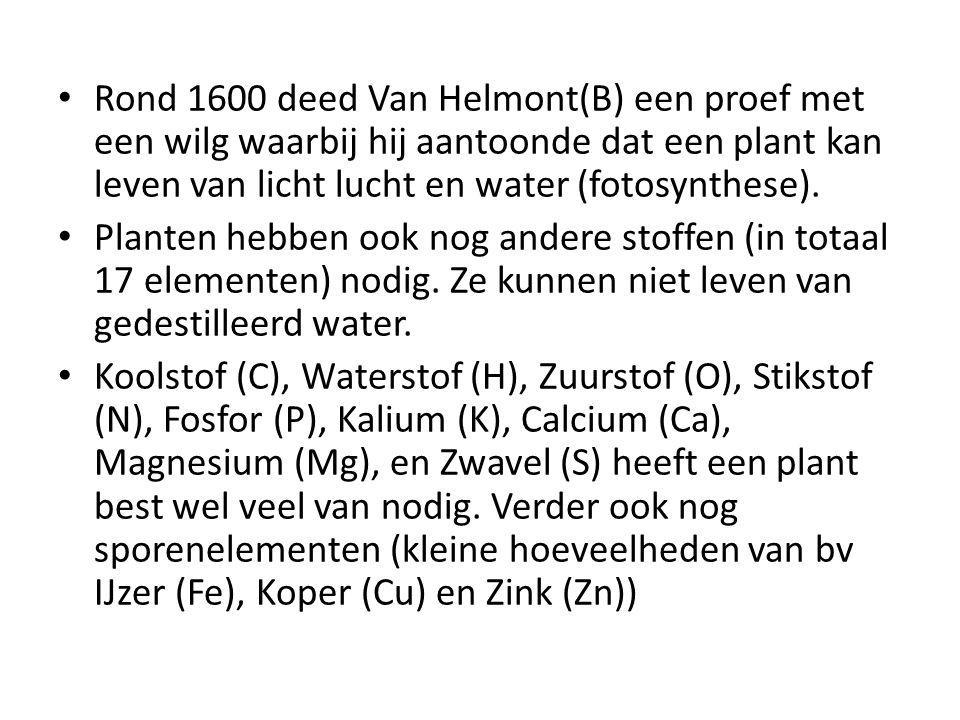 Rond 1600 deed Van Helmont(B) een proef met een wilg waarbij hij aantoonde dat een plant kan leven van licht lucht en water (fotosynthese). Planten he
