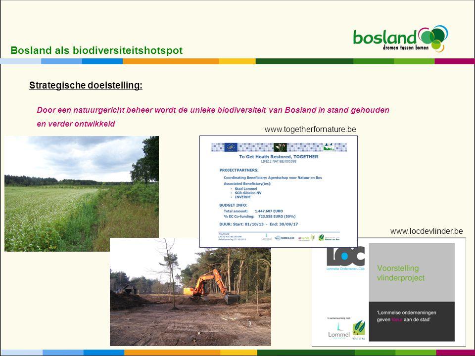 Bosland als biodiversiteitshotspot Door een natuurgericht beheer wordt de unieke biodiversiteit van Bosland in stand gehouden en verder ontwikkeld Strategische doelstelling: www.togetherfornature.be www.locdevlinder.be