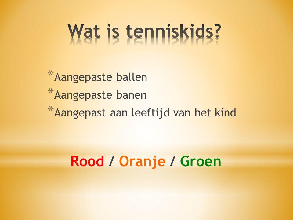 * Aangepaste ballen * Aangepaste banen * Aangepast aan leeftijd van het kind Rood / Oranje / Groen