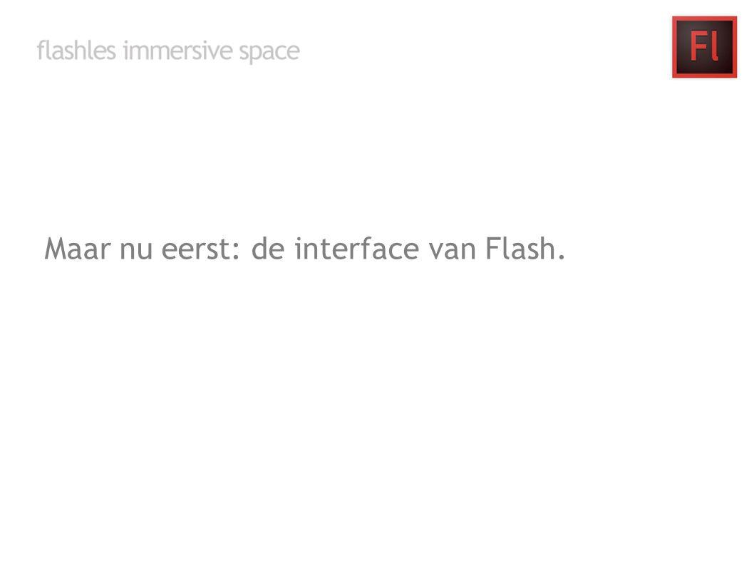 Maar nu eerst: de interface van Flash.