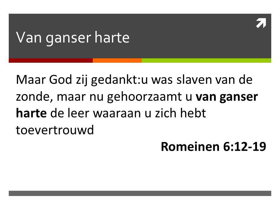  Van ganser harte Maar God zij gedankt:u was slaven van de zonde, maar nu gehoorzaamt u van ganser harte de leer waaraan u zich hebt toevertrouwd Romeinen 6:12-19