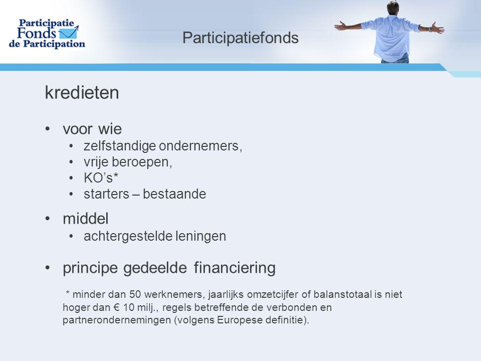 partnerschap Cofinanciering met kredietinstellingen met de instituten voor de cijferberoepen Private Investment Facility met Business Angels Netwerken met Private Privaks Microfinanciering met steunpunten voor starters met KMO-organisaties Participatiefonds