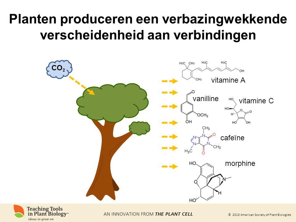 © 2015 American Society of Plant Biologists Planten produceren een verbazingwekkende verscheidenheid aan verbindingen vitamine A vitamine C vanilline cafeïne morphine CO 2