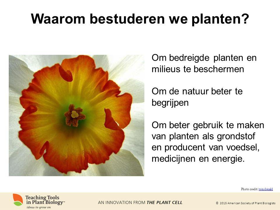 © 2015 American Society of Plant Biologists Waarom bestuderen we planten? Om bedreigde planten en milieus te beschermen Om de natuur beter te begrijpe