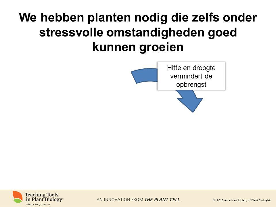 © 2015 American Society of Plant Biologists We hebben planten nodig die zelfs onder stressvolle omstandigheden goed kunnen groeien Hitte en droogte ve