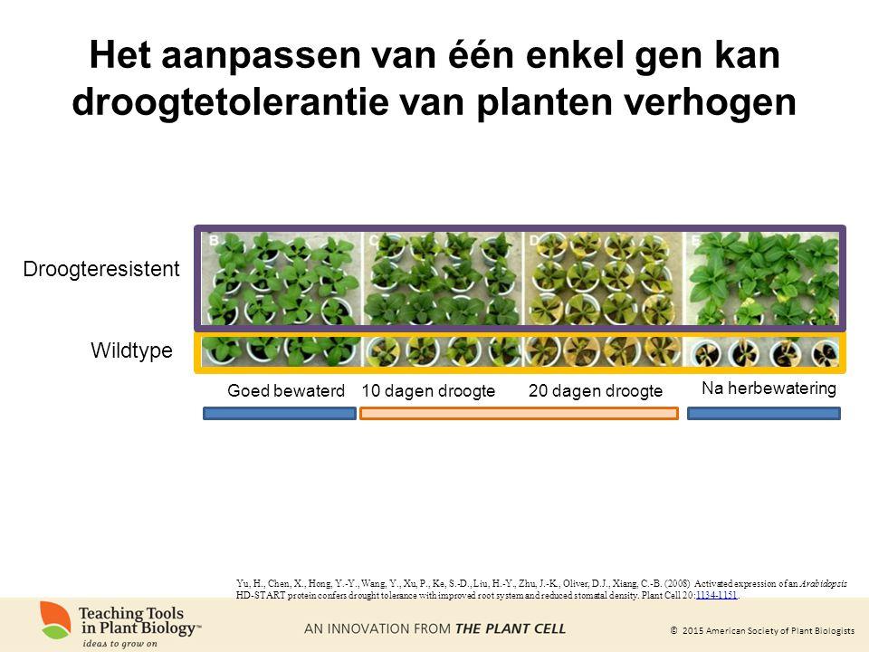 © 2015 American Society of Plant Biologists Het aanpassen van één enkel gen kan droogtetolerantie van planten verhogen Yu, H., Chen, X., Hong, Y.-Y., Wang, Y., Xu, P., Ke, S.-D., Liu, H.-Y., Zhu, J.-K., Oliver, D.J., Xiang, C.-B.