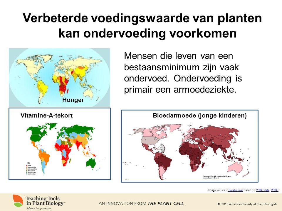 © 2015 American Society of Plant Biologists Vitamine-A-tekort Honger Mensen die leven van een bestaansminimum zijn vaak ondervoed. Ondervoeding is pri