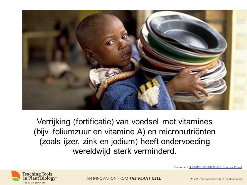 © 2015 American Society of Plant Biologists Verrijking (fortificatie) van voedsel met vitamines (bijv.