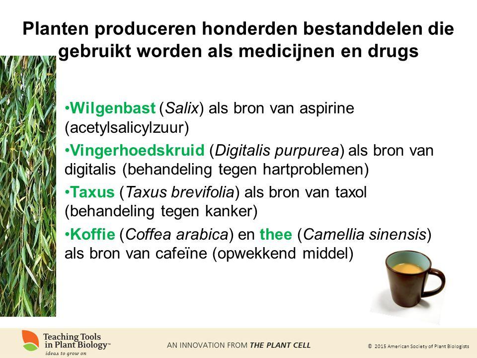 © 2015 American Society of Plant Biologists Planten produceren honderden bestanddelen die gebruikt worden als medicijnen en drugs Wilgenbast (Salix) als bron van aspirine (acetylsalicylzuur) Vingerhoedskruid (Digitalis purpurea) als bron van digitalis (behandeling tegen hartproblemen) Taxus (Taxus brevifolia) als bron van taxol (behandeling tegen kanker) Koffie (Coffea arabica) en thee (Camellia sinensis) als bron van cafeïne (opwekkend middel)